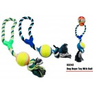 Doggy Play Rope Toy With Tennis Ball - Colours May Vary