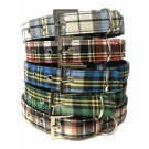 Pets That Play Dog Collar - 2.5cm x 50cm Approx - Colours May Vary