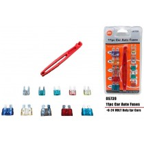 11pc Car Auto Fuses - 6v-24v - With Tool