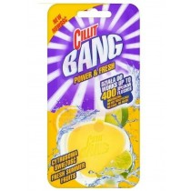 Cillit Bang Power & Fresh Cleaner Toilet Block - Fresh Summer Fruits - 40g - Exp: 01/21