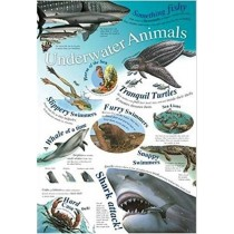 Underworld Animals Wall Chart / Poster - 76cm x 52cm